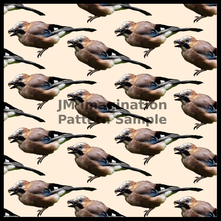 7 Bird 3.png