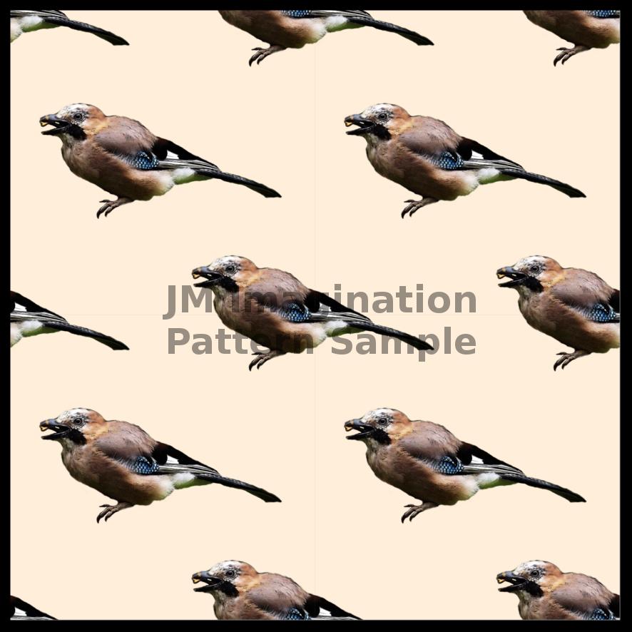 7 Jay