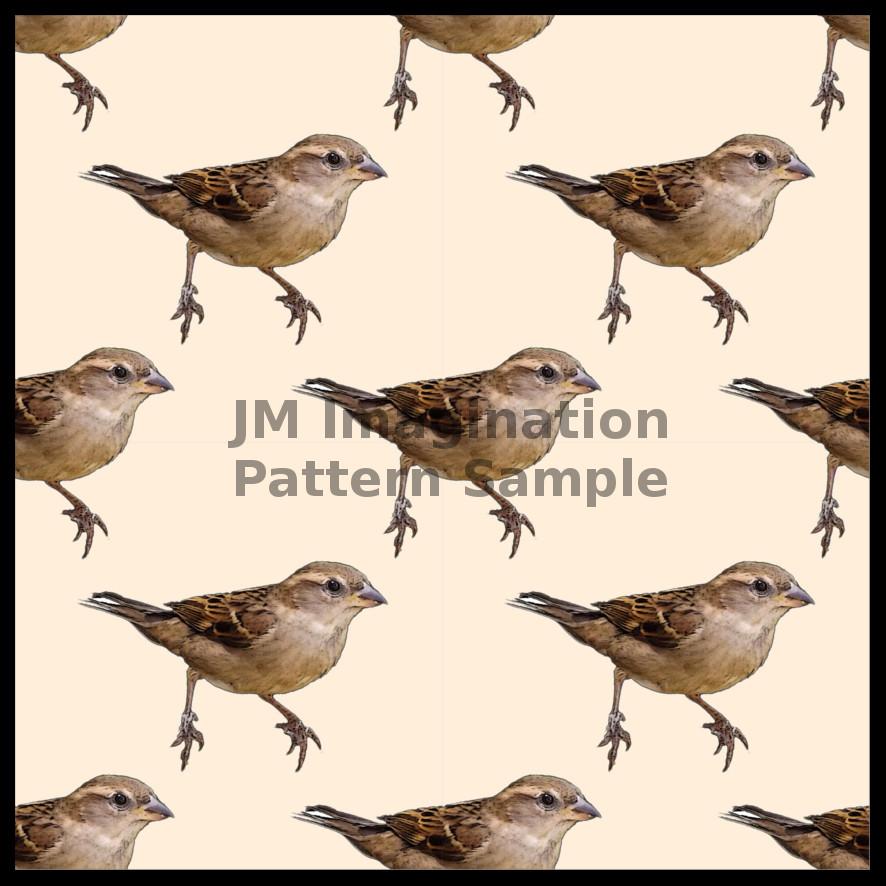 7 Sparrow