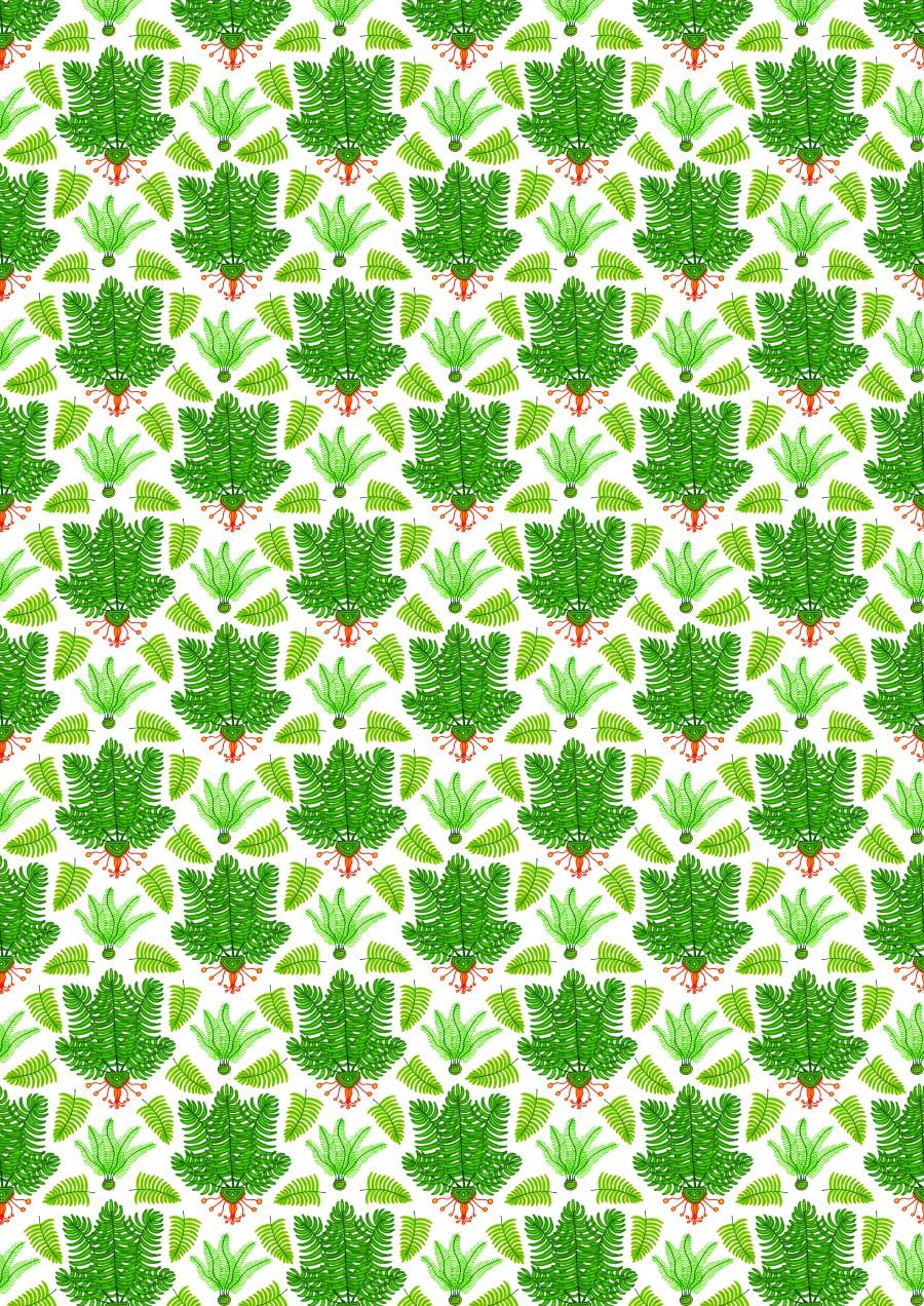 Poster 4 - Ferns